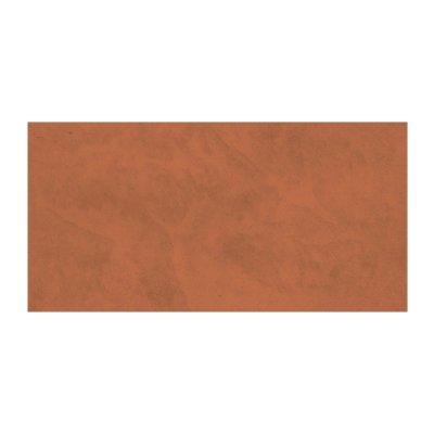 Плитка настенная 250х500х8мм Axima Арагон терракотовая